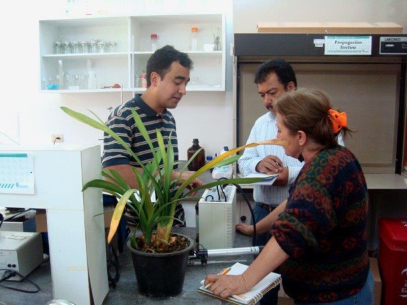 Capacitacion Centro de Investigacion Corpoica La Selva